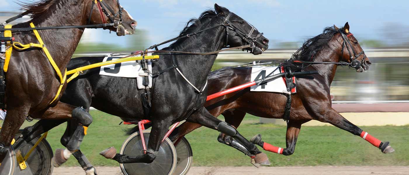 OG_Racing_2_1400x600_Web